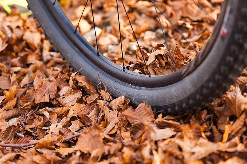 bike on track