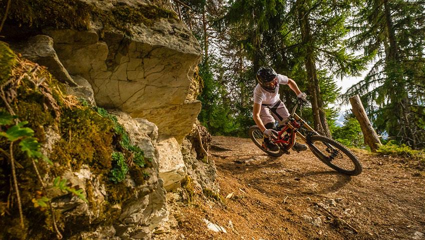 Mtb biker on trail downhill elastic interface
